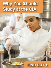 Find Out Why You Should Study at the CIA >