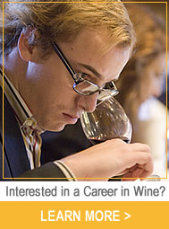 Interested in a Career in Wine?