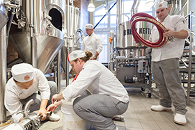 Students enrolled in the elective Art & Science of Brewing have the opportunity to learn how to make beer in a fully-equipped production brewery at the CIA's campus in Hyde Park, NY.