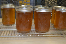 Real Hudson Valley maple syrup produced by students and faculty at The Culinary Institute of America will be incorporated into desserts at the campus restaurants and used in classes