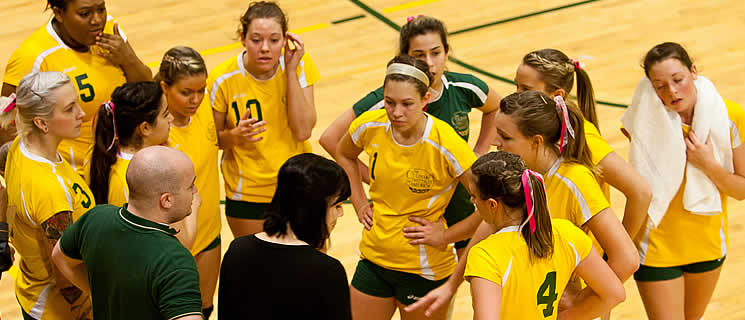 Read about CIA's college volleyball history. Learn about the CIA Steels team.