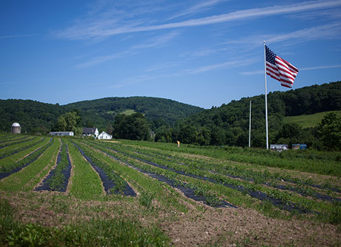 Global Cuisines and Cultures Trips to U.S. Hudson Valley and Near Landscapes