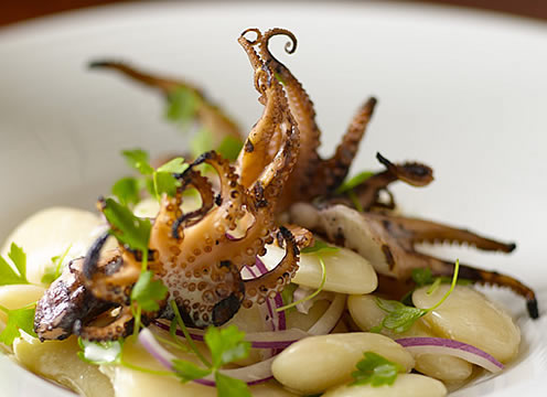Grilled octopus served up at the Culinary Institute of America