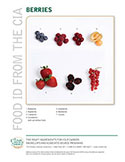 Food ID—Berries