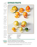 Food ID—Citrus Fruits