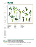 Food ID—Fresh Herbs