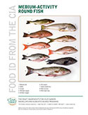 Food ID—Medium Activity Round Fish