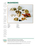 Food ID—Mushrooms