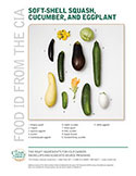 Food ID—Soft Shell Squash, Cucumber, and Eggplant