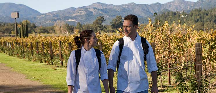 A couple of CIA at Greystone students walking in vineyards in the Napa Valley, CA.
