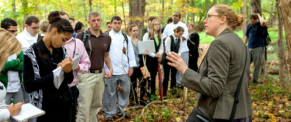 CIA students in the forest listening to a professor. CIA faculty have a wide range of expertise beyond the kitchen.